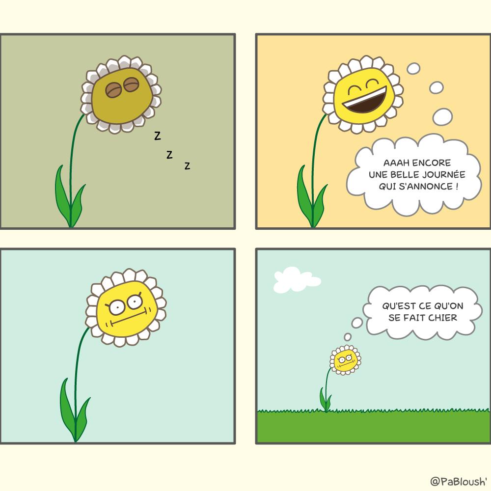 Une bande dessinée sur la vie d'une fleur