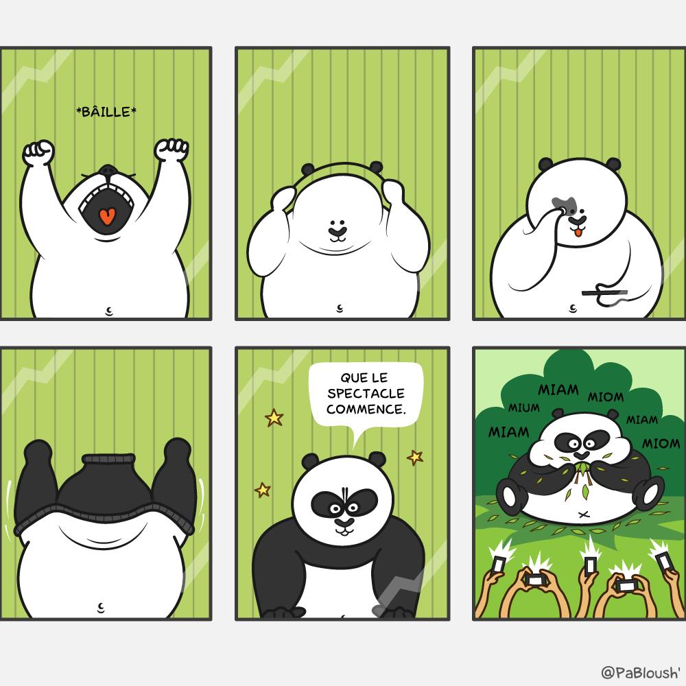 Une bande dessinée sur la vie d'un panda